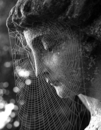 statuewithweb