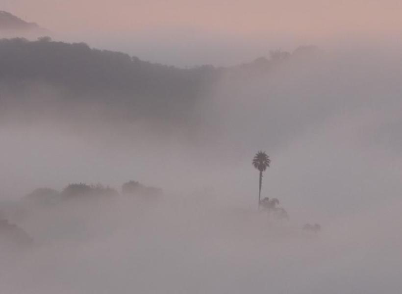 foggy la2