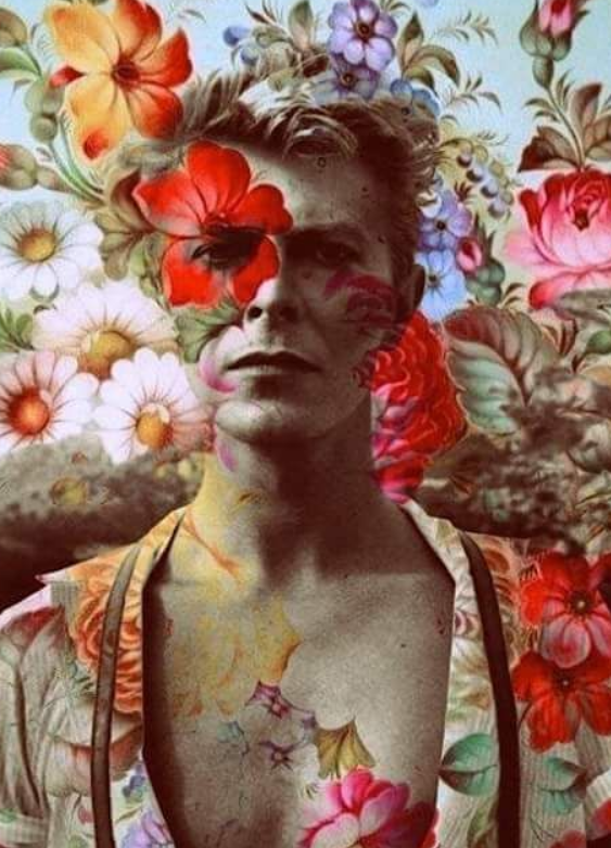 bowieflowers